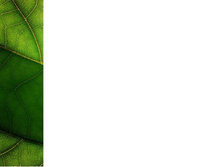 Botany PowerPoint Template, Slide 3, 02176, Nature & Environment — PoweredTemplate.com
