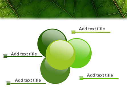 Botany PowerPoint Template Slide 10