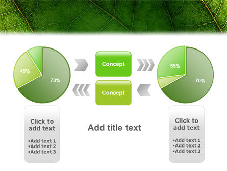 Botany PowerPoint Template Slide 11