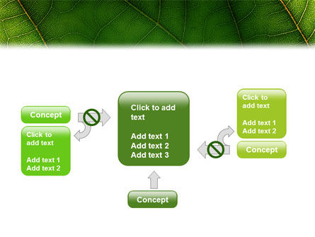 Botany PowerPoint Template Slide 13