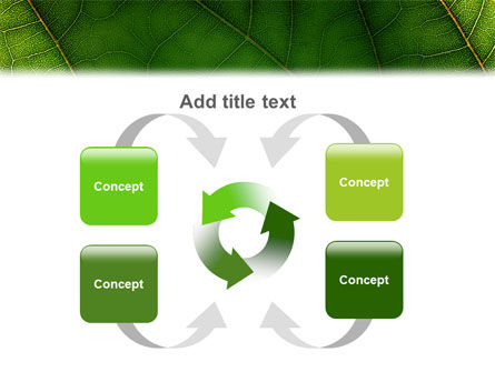 Botany PowerPoint Template Slide 6