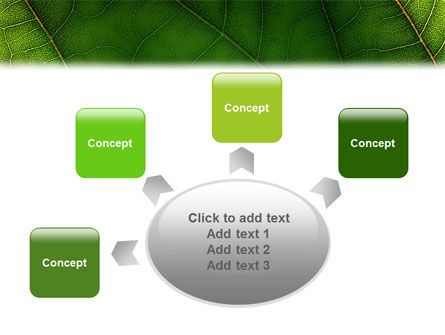 Botany PowerPoint Template Slide 7