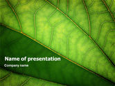 Nature & Environment: Plantkunde PowerPoint Template #02176