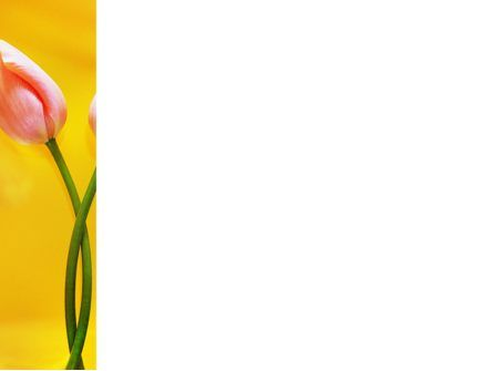 Tulip On A Yellow PowerPoint Template, Slide 3, 02206, Holiday/Special Occasion — PoweredTemplate.com
