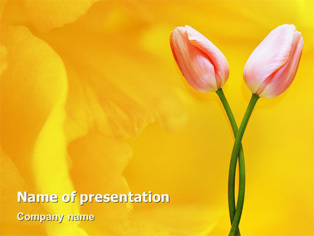 Holiday/Special Occasion: Tulip On A Yellow PowerPoint Template #02206