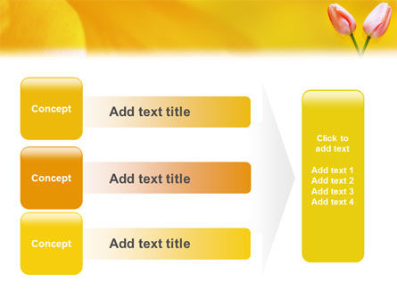 Tulip On A Yellow PowerPoint Template Slide 12