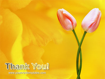 Tulip On A Yellow PowerPoint Template Slide 20