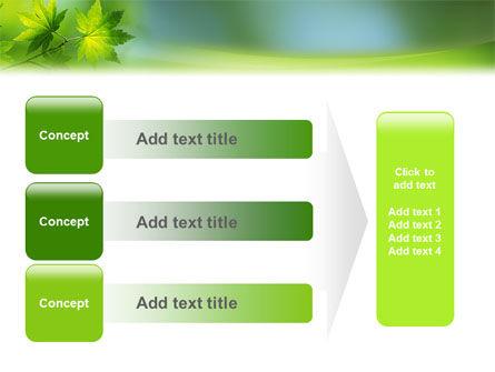 Flora PowerPoint Template Slide 12