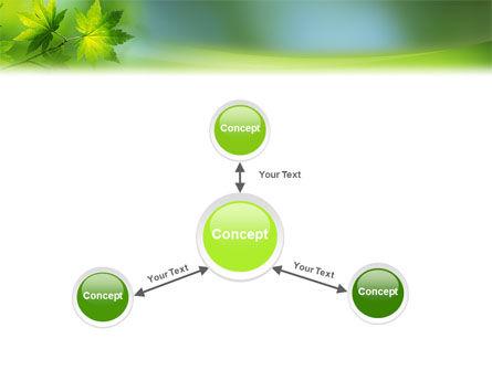 Flora PowerPoint Template Slide 14