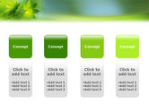 Flora PowerPoint Template#5