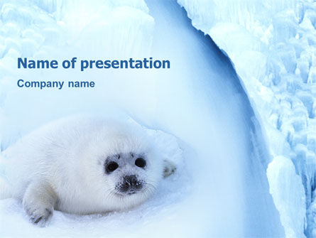 Animals and Pets: Plantilla de PowerPoint - piel de foca #02230