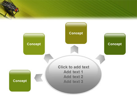 Sitting Fly PowerPoint Template Slide 7