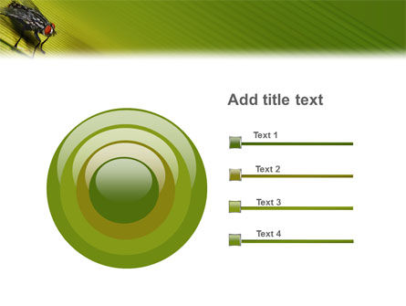 Sitting Fly PowerPoint Template Slide 9