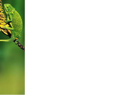 Chameleon Lizard PowerPoint Template, Slide 3, 02243, Animals and Pets — PoweredTemplate.com