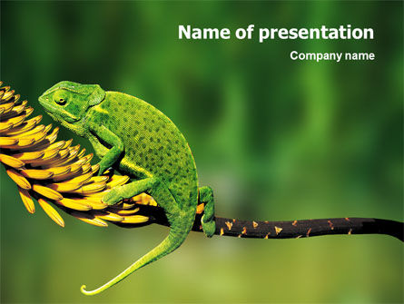 Animals and Pets: Plantilla de PowerPoint - lagarto camaleón #02243