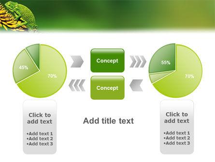 Chameleon Lizard PowerPoint Template Slide 11