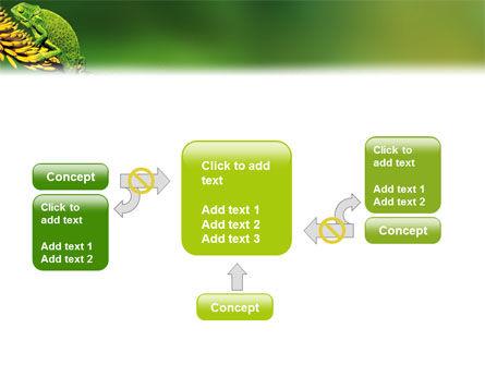 Chameleon Lizard PowerPoint Template Slide 13