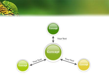 Chameleon Lizard PowerPoint Template Slide 14