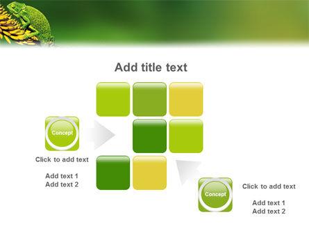 Chameleon Lizard PowerPoint Template Slide 16
