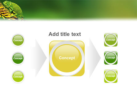 Chameleon Lizard PowerPoint Template Slide 17