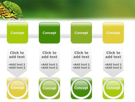 Chameleon Lizard PowerPoint Template Slide 18