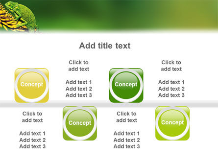 Chameleon Lizard PowerPoint Template Slide 19