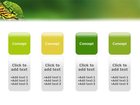Chameleon Lizard PowerPoint Template Slide 5