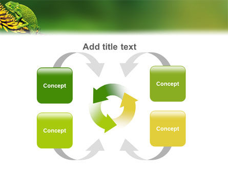 Chameleon Lizard PowerPoint Template Slide 6