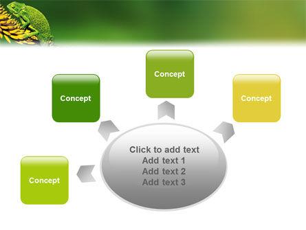 Chameleon Lizard PowerPoint Template Slide 7