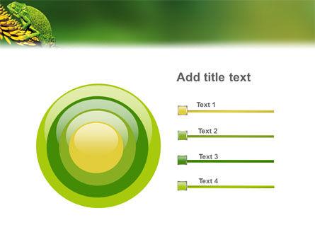 Chameleon Lizard PowerPoint Template Slide 9