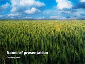 Agriculture: Grain PowerPoint Template #02248