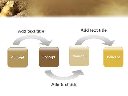 Marmot PowerPoint Template, Slide 4, 02254, Animals and Pets — PoweredTemplate.com