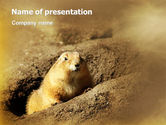 Nature & Environment: Plantilla de PowerPoint - marmota #02254