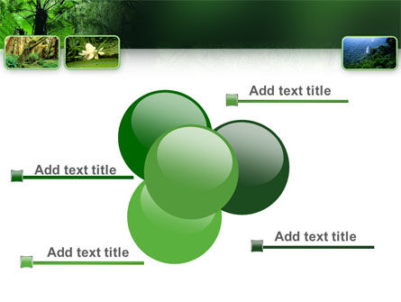 Tropical Forest PowerPoint Template Slide 10