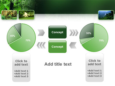 Tropical Forest PowerPoint Template Slide 11