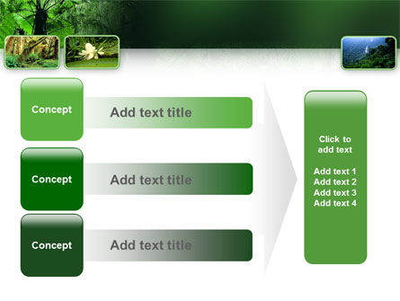 Tropical Forest PowerPoint Template Slide 12