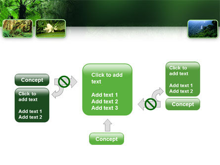 Tropical Forest PowerPoint Template Slide 13