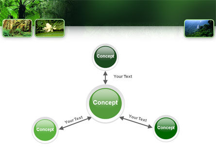 Tropical Forest PowerPoint Template Slide 14