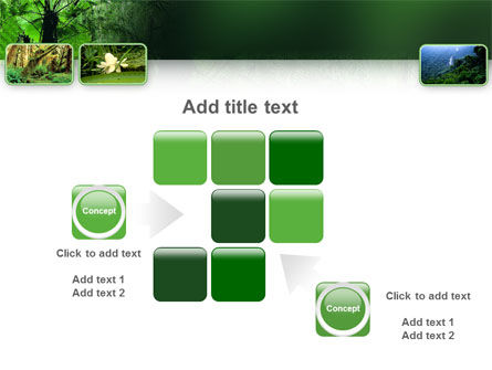 Tropical Forest PowerPoint Template Slide 16