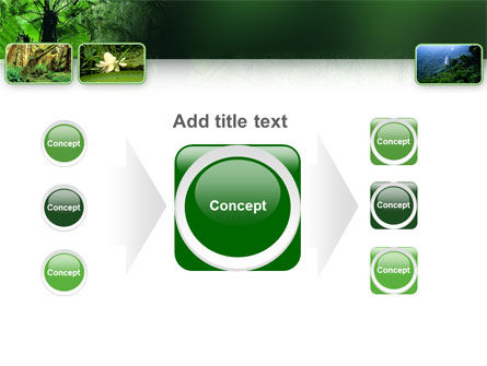 Tropical Forest PowerPoint Template Slide 17
