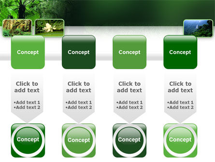 Tropical Forest PowerPoint Template Slide 18