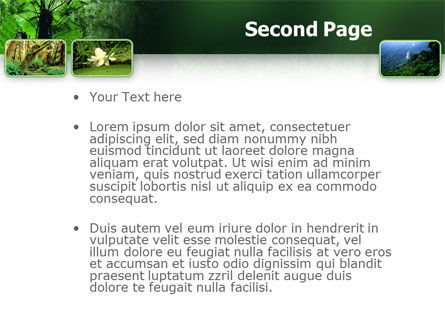 Tropical Forest PowerPoint Template, Slide 2, 02355, Nature & Environment — PoweredTemplate.com