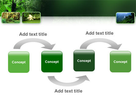 Tropical Forest PowerPoint Template, Slide 4, 02355, Nature & Environment — PoweredTemplate.com