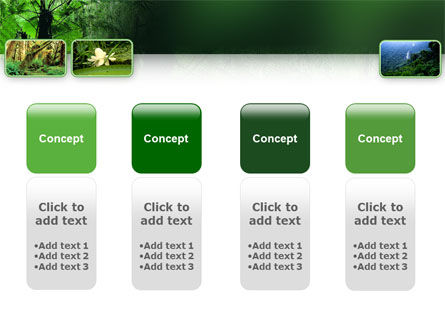 Tropical Forest PowerPoint Template Slide 5