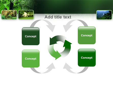 Tropical Forest PowerPoint Template Slide 6