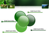 Tropical Forest PowerPoint Template#10