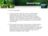 Tropical Forest PowerPoint Template#2