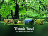 Tropical Forest PowerPoint Template#20