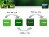 Tropical Forest PowerPoint Template#4