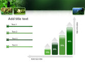 Tropical Forest PowerPoint Template#8